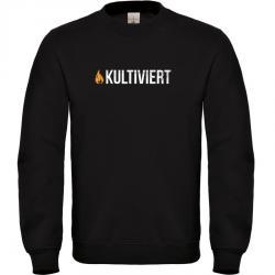 kultiviert Pullover Männer